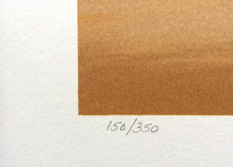 Charyzmatyczny impuls - litografia