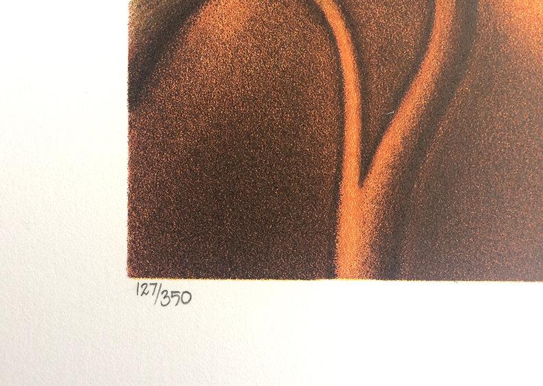 Nostalgia w zwolnionym tempie - litografia