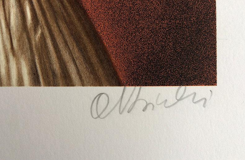 Łatwo dostępna tożsamość - litografia