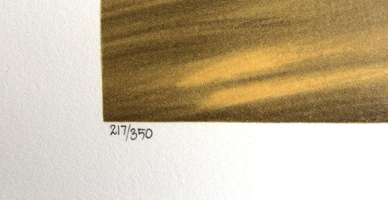 Tekstura przypadkowego pragnienia - litografia