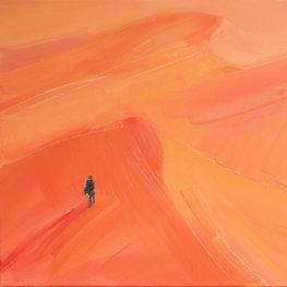 Na pustyni 5